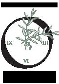 ogp-logo